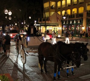 Horse Drawn Carriage 02 (2)