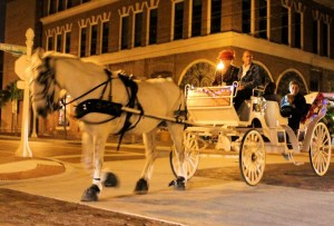 horse-drawn-carriage-01-4