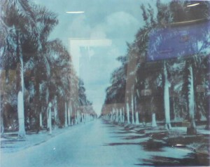 McGregor Boulevard (3)
