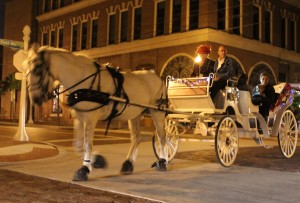 Horse Drawn Carriage 01 (4)