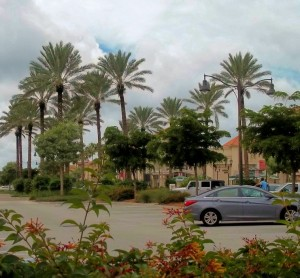 Gulf Coast Town Center 05