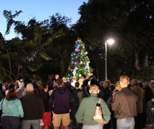 Christmas Tree Lighting 08