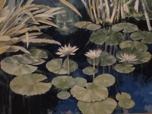 Schwartz Water Lillies 01