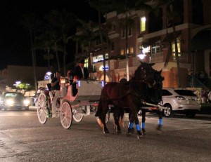 Horse Drawn Carriage 01 (2)