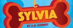 Meet 'Sylvia' actor David Breitbarth