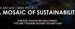 'Arcade Creek Project' filmmaker Jierel Almario in the frame