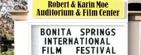'Finding Your Feet' Bonita International's audience choice winner