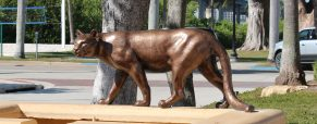 Conservation of Wilkins' 'Florida Panthers' now complete