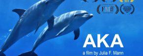 'AKA' Best Inspirational Film at Austin Revolution