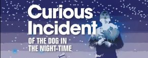 'Curious Incident' play dates, times and ticket information