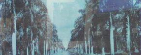 Spotlight on Darryl Pottorf's transfer solvent print of McGregor Boulevard